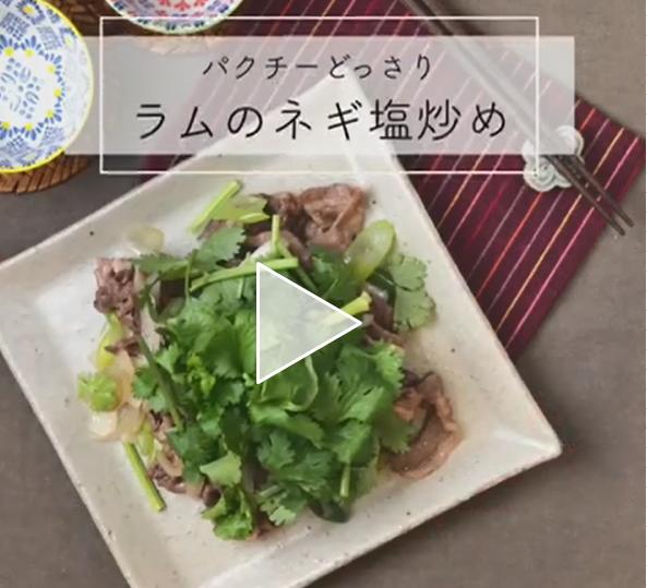 【レシピ動画】パクチーどっさり ラムのネギ塩炒め