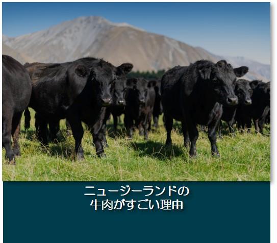 ニュージーランドの牛肉がすごい理由